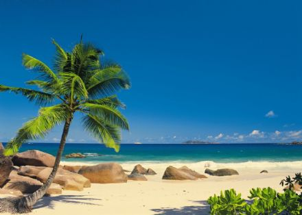 Seychellen paper wallpaper mural palm and beach